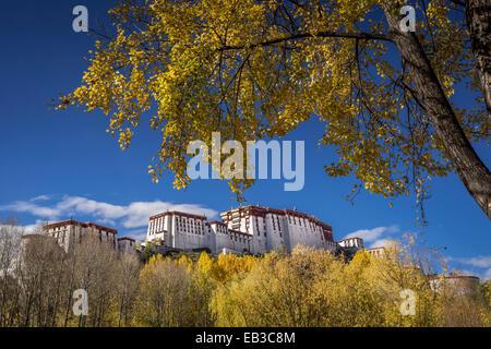 China, Tibet Autonomous Region, Potala Palace in autumn - Stock Photo