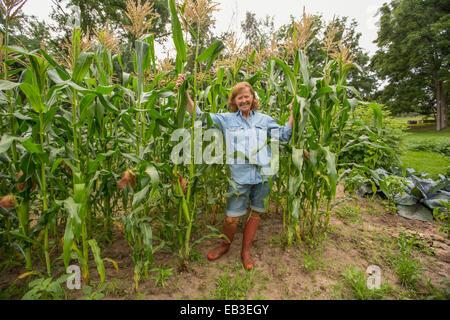 Older Caucasian woman standing in corn field on farm - Stock Photo