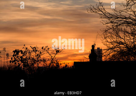 South Norwood, London, UK. 24th November 2014. Uk Weather. Sunny sunset in South Norwood. Credit:  Cecilia Colussi/Alamy - Stock Photo