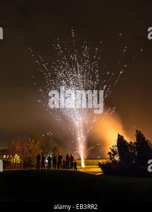 Firework party in garden, Mulu meeting at Andy Eavis house, Hessle, Humberside, UK - Stock Photo
