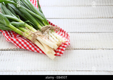 Fresh onions and garlic on a napkin - Stock Photo