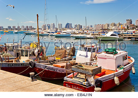 A scenic view of fishing boats docked at the marina and the skyline of Punta del Este. - Stock Photo