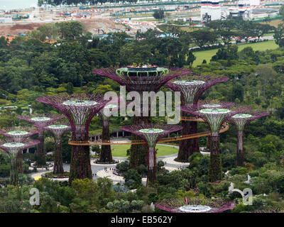 South East Asia Singapore Gardens on the Bay - Stock Photo