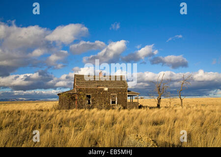 A Depression era farm house in an abandoned wheat field near Madras, Oregon, circa 1920s - Stock Photo