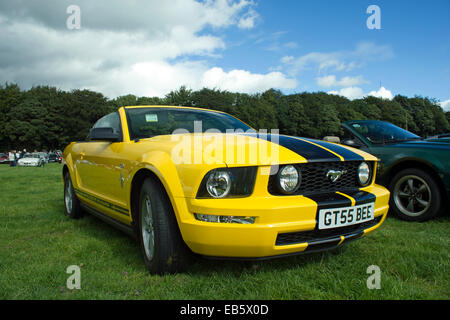 Ford Mustang - Stock Photo