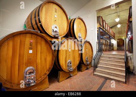 Wine barrels, Tuscany, Italy - Stock Photo