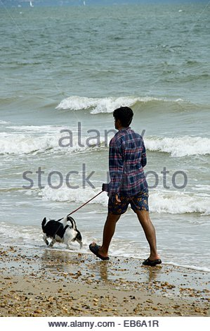 Man walking with his dog on a lead along the waters edge at Avon Beach, Mudeford, Dorset, England - Stock Photo