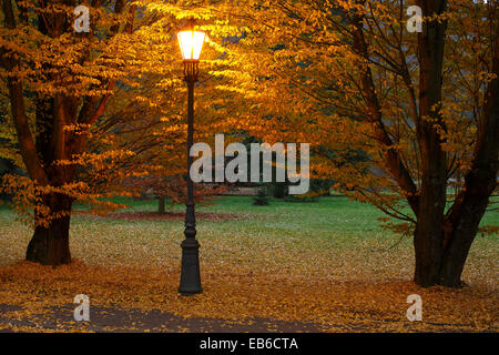 Lamppost in the park, light, evening mood, Autumn - Stock Photo