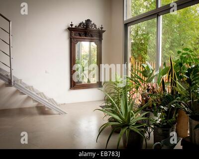 access to the garden big wooden mirror metallic staircase interior plants interior