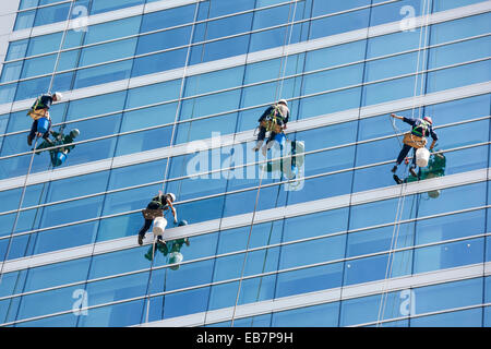 Window cleaners cleaning windows of modern office tower high rise building skyscraper using RDS ropes and bosun's - Stock Photo