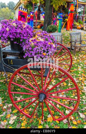Colorful decorated waggon in autumn, Stowe, Vermont, USA - Stock Photo