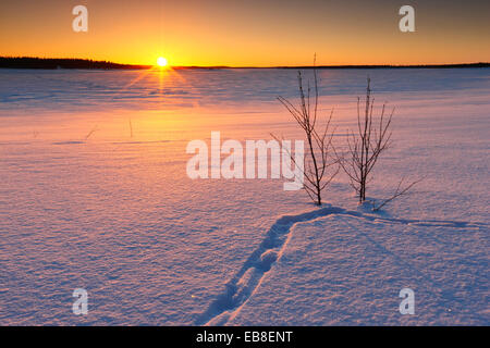 Winter landscape. Sunset in Lapland, Finland - Stock Photo