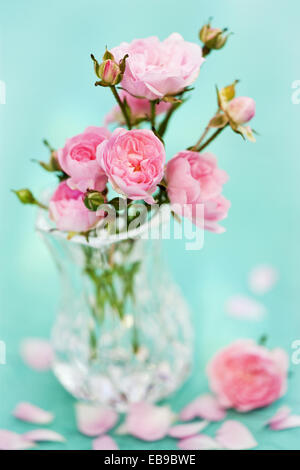 Small pink Rose flowers in glass vase. - Stock Photo