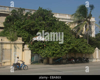 Traditional French Architecture In Pondicherry Tamil Nadu