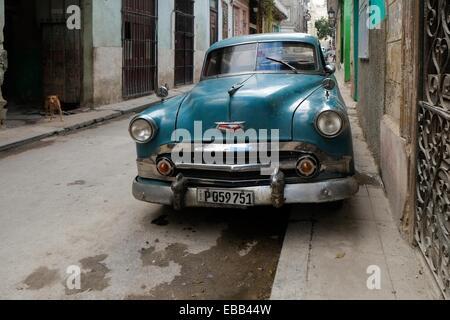 Cuban classic car and dog seen in a central Havana street, Cuba - Stock Photo