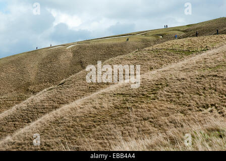 Uffington visitors looking at White horse seen from below. The horse is frustratingly impossible to see from ground - Stock Photo