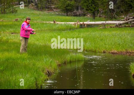 Flyfishing at summit creek malheur national forest oregon for Oregon free fishing day 2017