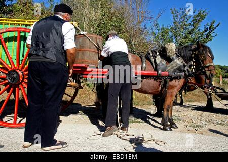 Cart with grapes vintage celebration´12 Sant Fost de Campsentelles Catalonia Spain - Stock Photo