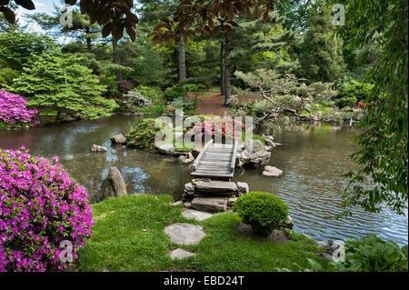 Elegant ... Japanese Garden, Philadelphia, USA   Stock Photo
