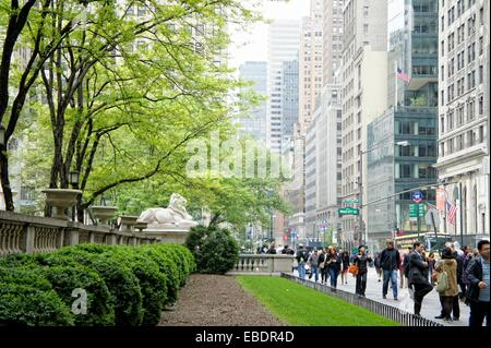 New York Public Library, 5th Avenue, Midtown Manhattan, New York City, New York, USA, North America. - Stock Photo