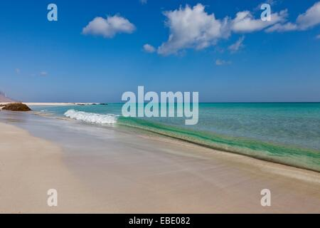Erher east coast Socotra island listed as World Heritage by UNESCO Aden Governorate Yemen Arabia West Asia. - Stock Photo
