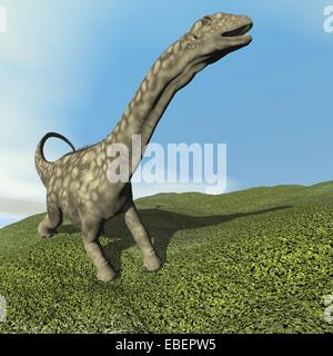 Argentinosaurus dinosaur walking on the grass by day - 3D render - Stock Photo