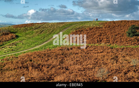 A path leading up a hill leading to a triangulation post on the summit. The hill is covered in decaying brown bracken. - Stock Photo