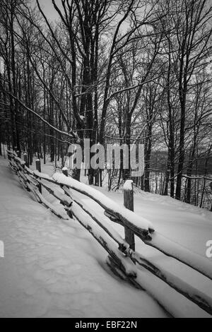 Winter landscape with snow falling on rural fence and snowy trees in black and white - Stock Photo