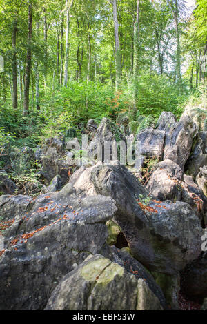 Nature reserve Felsenmeer, means 'Ocean of rocks', Sauerlandpark, Hemer, Sauerland region, North Rhine-Westphalia, - Stock Photo