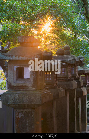 Stone lanterns at Kasuga Taisha Shrine (UNESCO World Heritage Site) at dusk, Nara, Kansai, Japan - Stock Photo