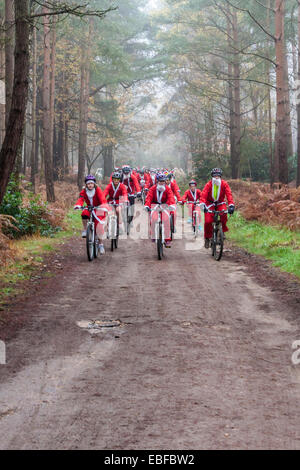 Fund-raisers dressed as Santas cycled in the 'Santa Cycle', part of the annual 'Santa Dash' to raise money for the - Stock Photo