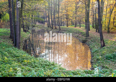Quiet autumn pond with fallen leaves on the water and trees around - Stock Photo