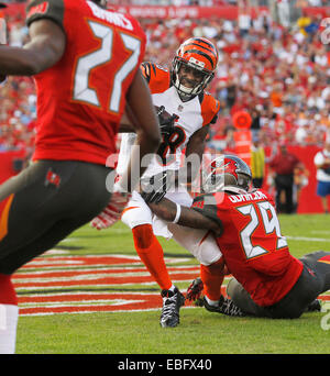 Nov 30, 2014 - Tampa, Florida, U.S. - Cincinnati Bengals wide receiver A.J. GREEN (18) catches a pass for a touchdown - Stock Photo