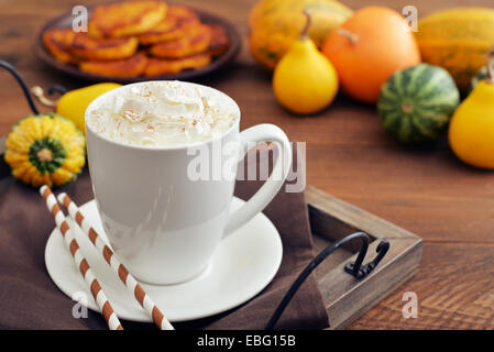 Pumpkin spice latte with whipped cream, cinnamon and decorative pumpkins - Stock Photo
