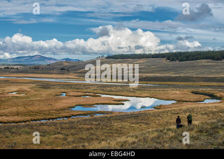 Scenic landscape and Yellowstone river in Yellowstone National Park, WY, USA - Stock Photo
