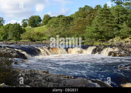 Low Force waterfall in Teesdale, UK - Stock Photo