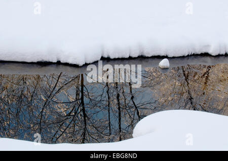 Winter forest is reflected in the water. Water-sides of stream are coated with snow. - Stock Photo