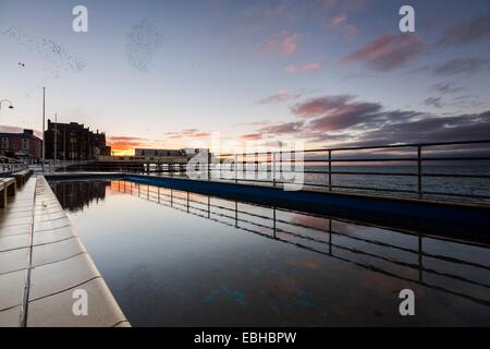 An urban murmuration of starlings over the pier in Aberystwyth reflected in a promenade paddling pool at twilight - Stock Photo