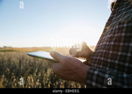 Cropped shot of senior male farmer using digital tablet in soybean field, Plattsburg, Missouri, USA - Stock Photo