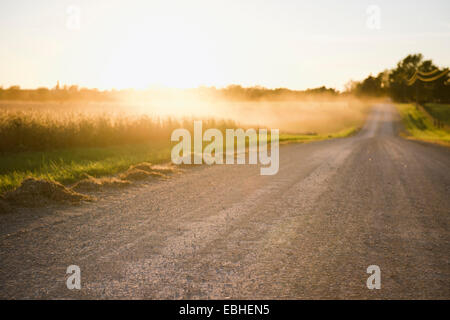 Rural road and mists over fields at sunrise, Missouri, USA - Stock Photo