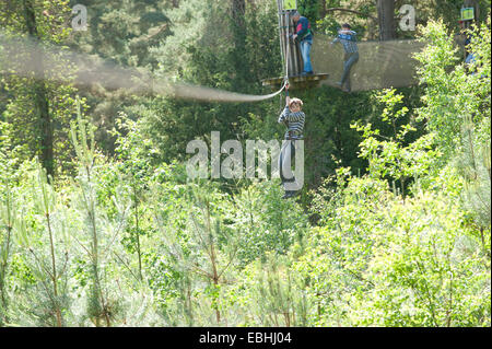 High ropes course in Wales - Stock Photo