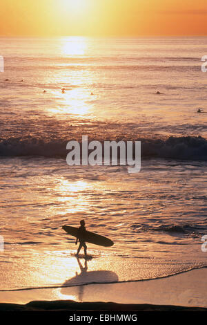 Surfer Walking Beach at Sunset, La Jolla, California, USA - Stock Photo