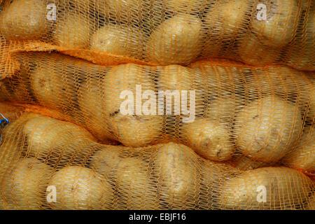 potato (Solanum tuberosum), stack of potatoe sacks, Germany - Stock Photo