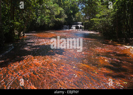 Jasper river bed, Quebrada de Jaspe, Venezuela, Canaima National Park - Stock Photo