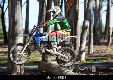 Young male motocross racer jumping on top of forest logs - Stock Photo