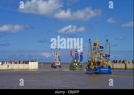 decorated shrimp boats left the harbour, Germany, Lower Saxony, Neuharlingersiel