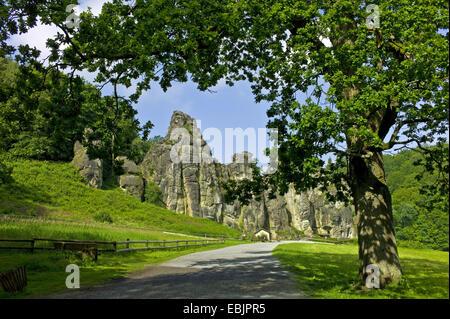 Externsteine, rock formation, Germany, North Rhine-Westphalia, Teutoburg Forest - Stock Photo