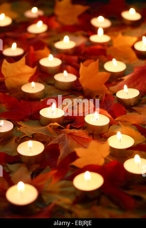 burning tea candles in the autumn foliage - Stock Photo