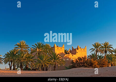 date palm (Phoenix dactylifera), desert hotel in Mhamid oasis in morning light, Morocco, Souss-Massa-Dara�, Mhamid - Stock Photo