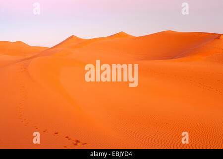 sand dunes in Sahara, Morocco, Souss-Massa-DaraÔ, Erg Chegaga - Stock Photo